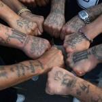 criminal-gangs